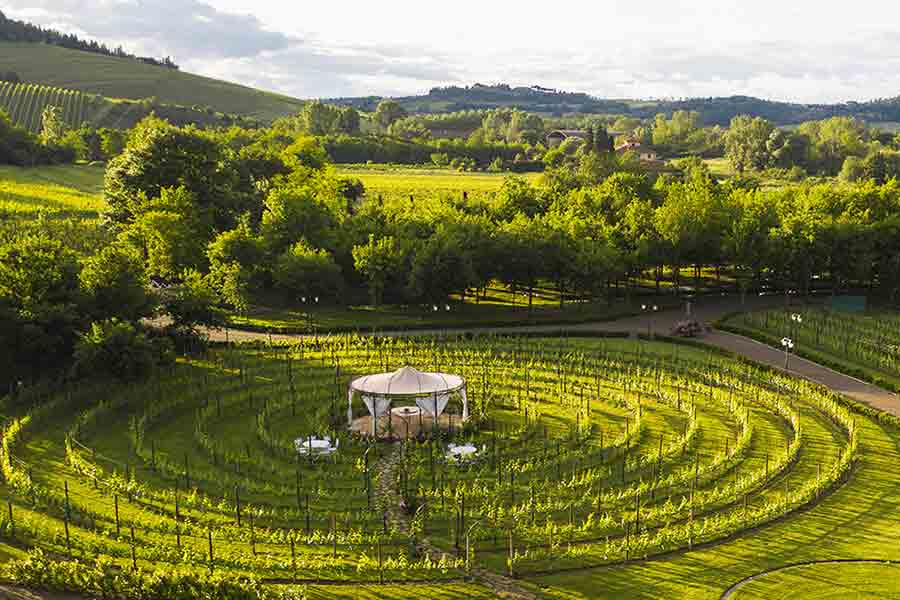 San_Gimignano_Gourmet_Vigna